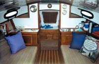 Forward view of the Horizon Cat's salon